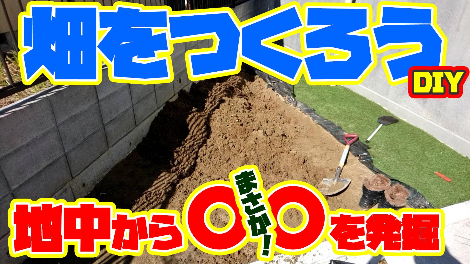 【DIY】家庭菜園をしよう!その前に人工芝を剥がして畑をつくろう!土を掘っていると大きな○○が!!【驚愕】